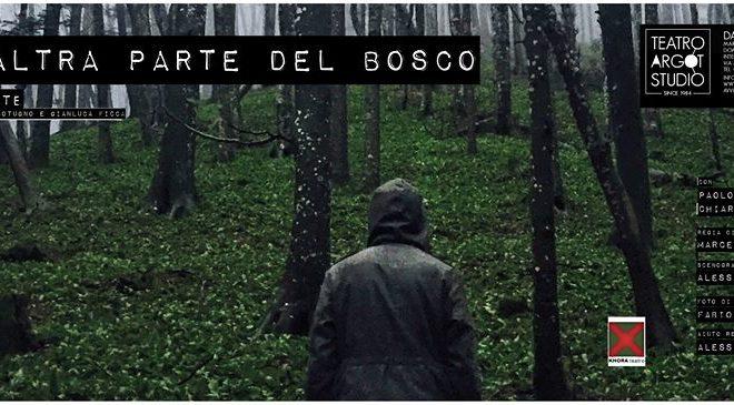 Dall'altra parte del Bosco